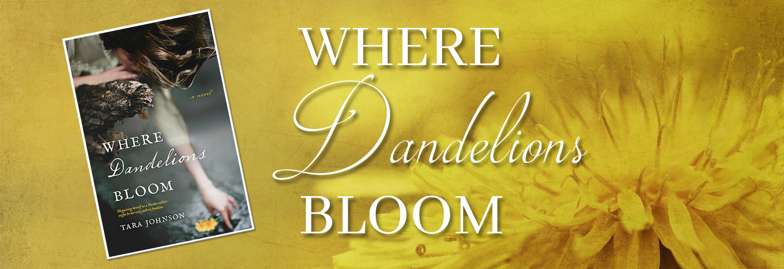 Where Dandelions Bloom by Tara Johnson